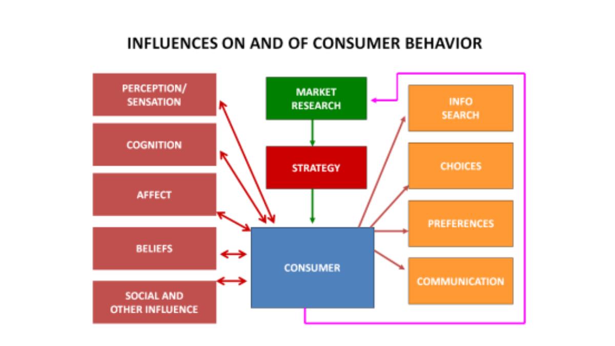 Types of consumer behavior