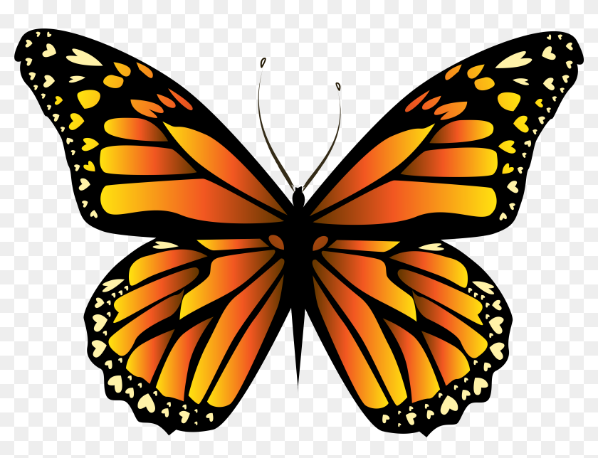 butterfly as a mnemonic memory method