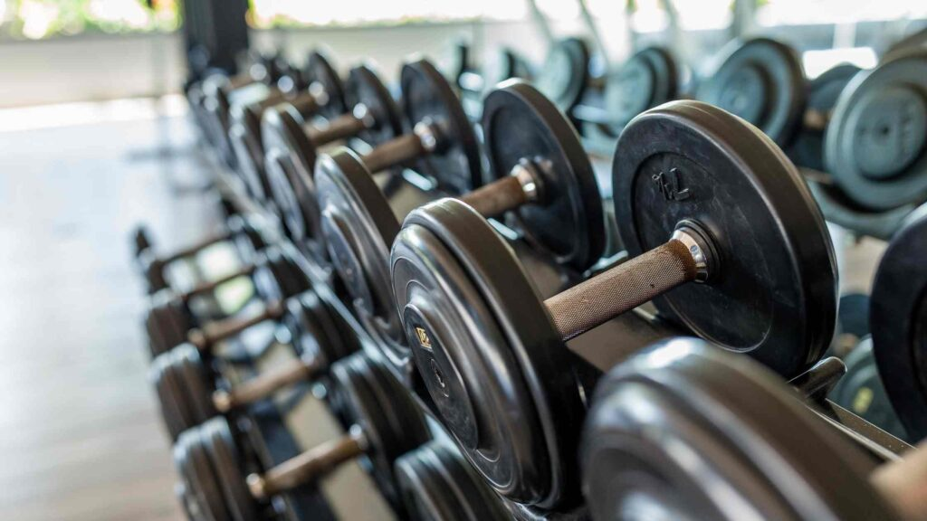 How to Start Gym Business? Marketing For GYM Complete Guide- Is Gym Business Profitable in India?